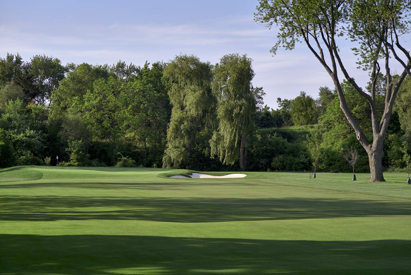 hole_11_IslingtonGC_2015-06-17_1005653_WEB